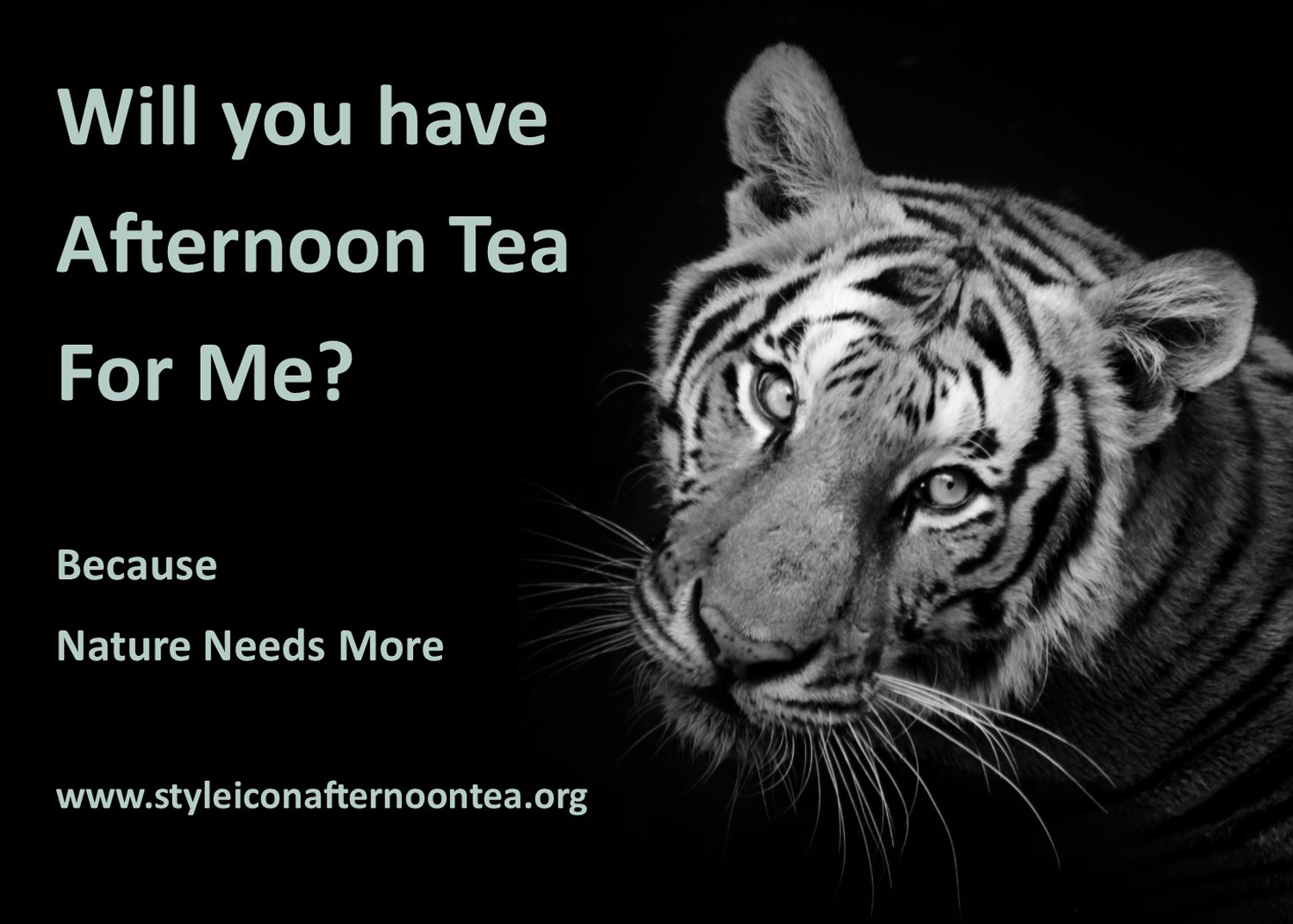 Will You Have Afternoon Tea For Me Tiger