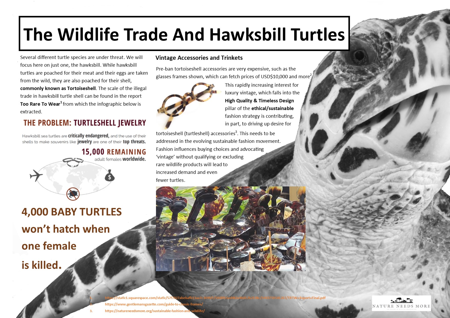 Trade Info Turtle Shell