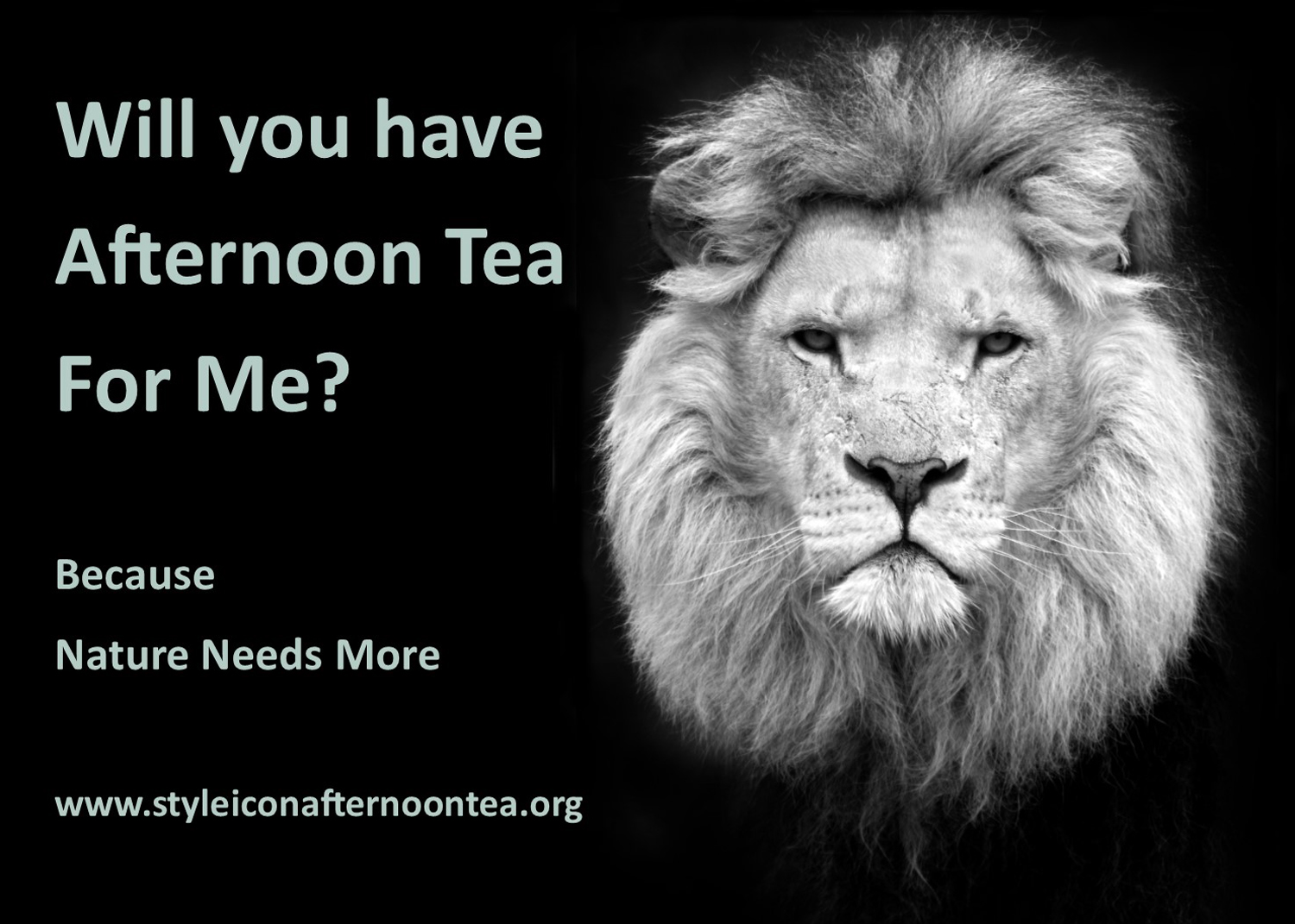 Will You Have Afternoon Tea For Me Lion