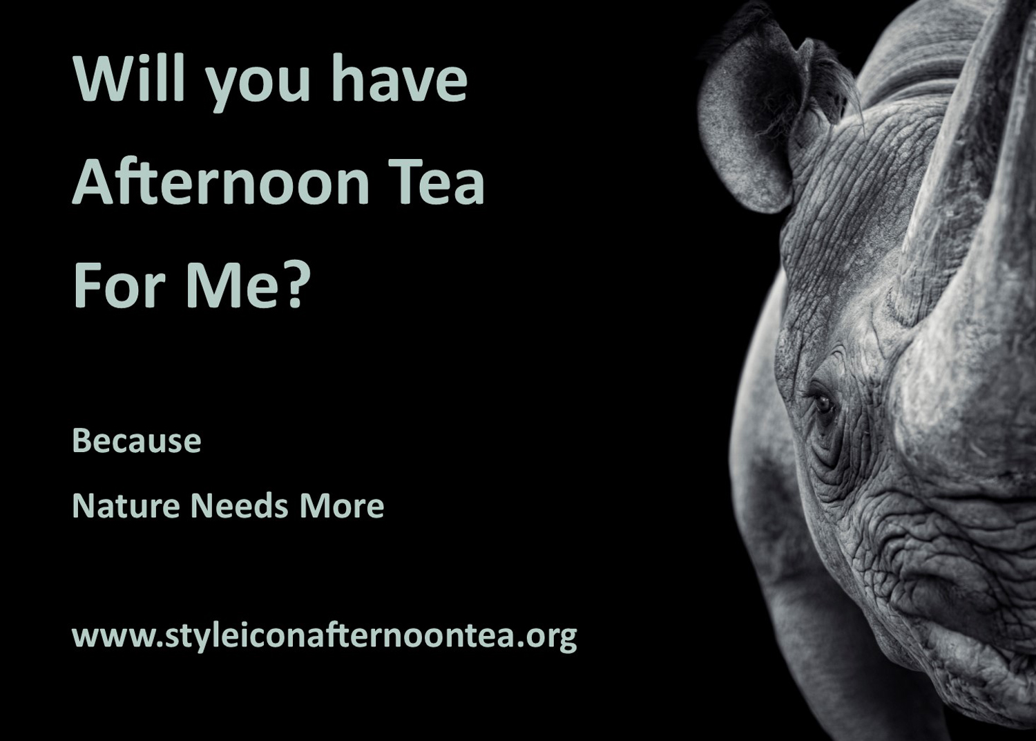 Will You Have Afternoon Tea For Me Rhino
