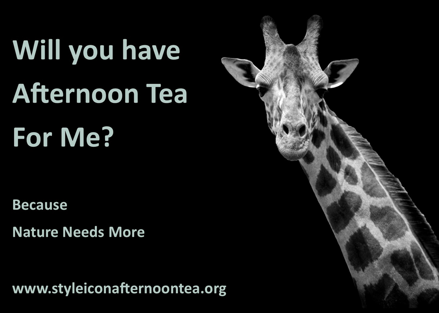 Will You Have Afternoon Tea For Me Giraffe