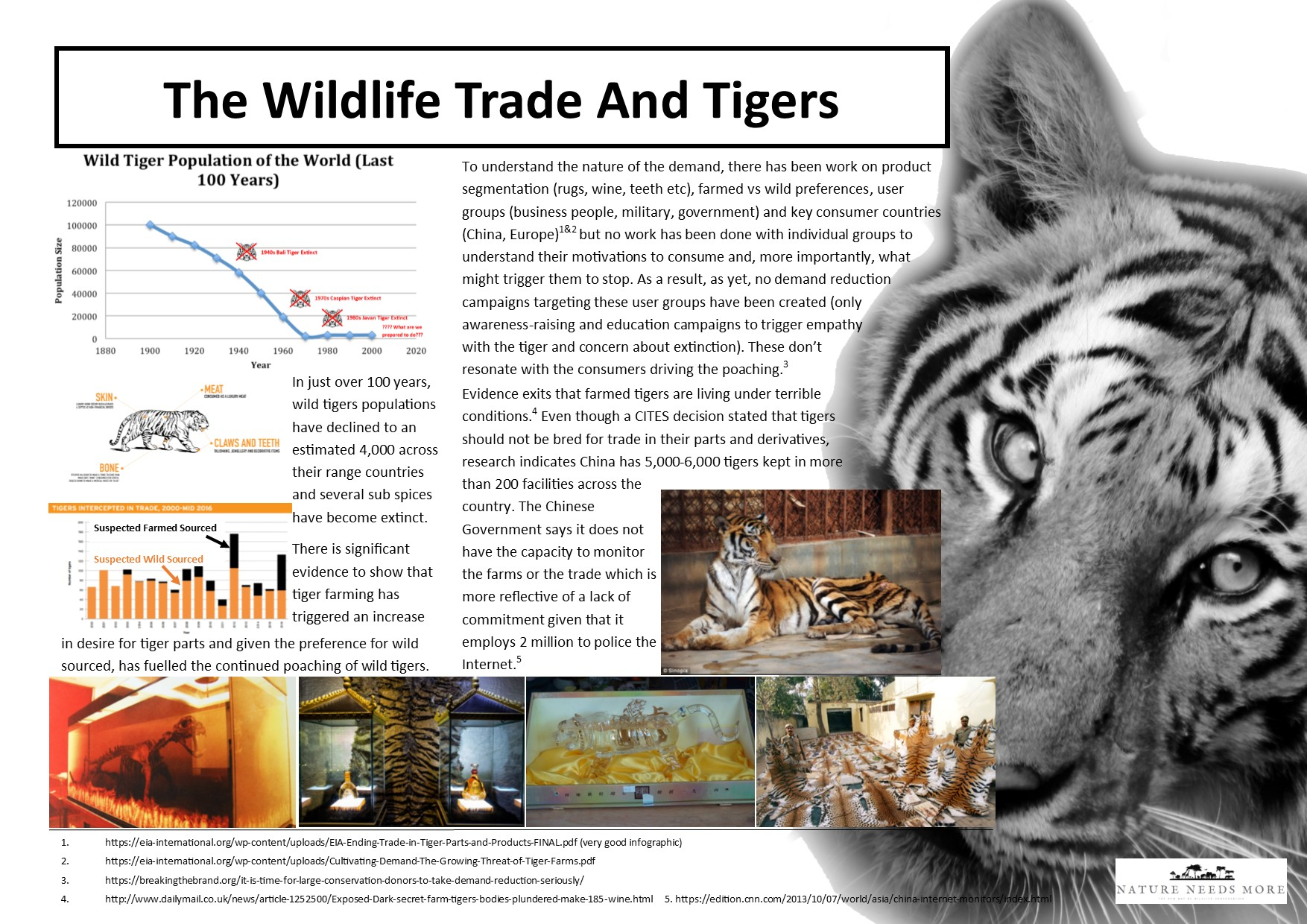 Trade Info Tiger
